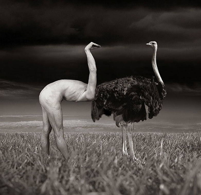 Thomas-Barbey-surrealismo-10