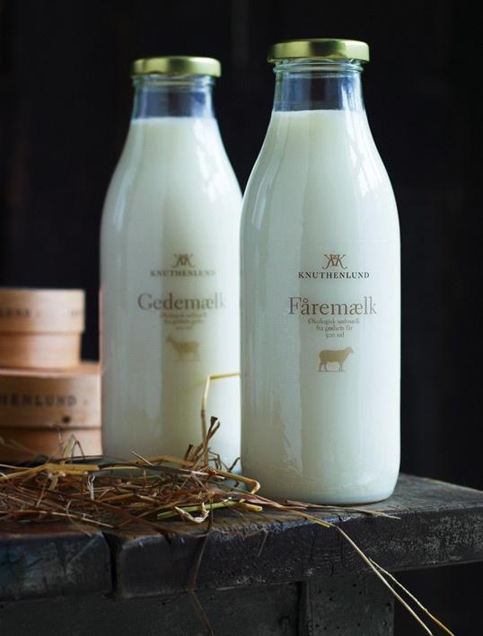 Proteína más barata leche