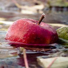 bajar-el-colesterol-manzana