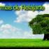 10 Formas de Relajarse - AHORA.