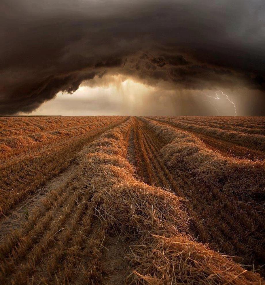 Increíbles fotos de la naturaleza de nuestro planeta (25 fotos).
