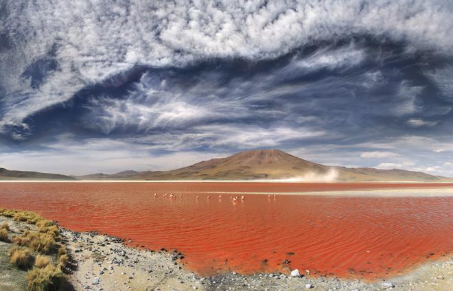 20 Fotos extraordinarias del Mundo.