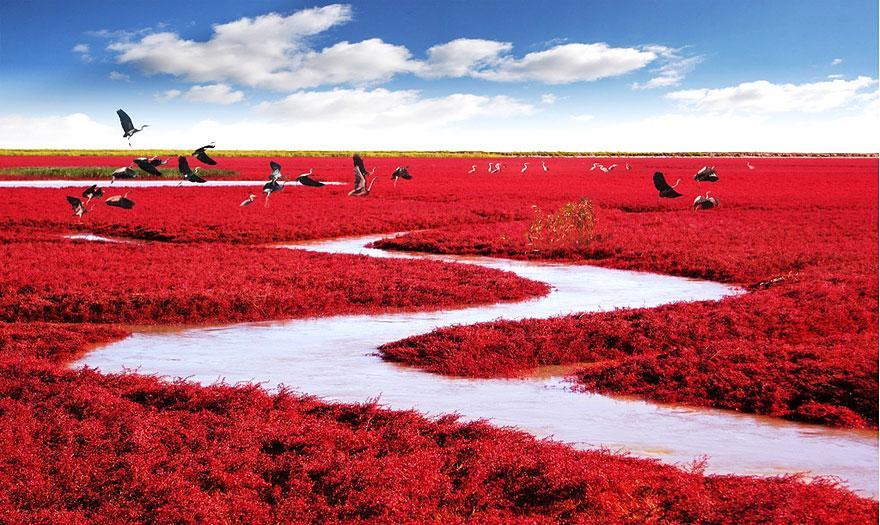 22 Lugares increíbles del mundo.