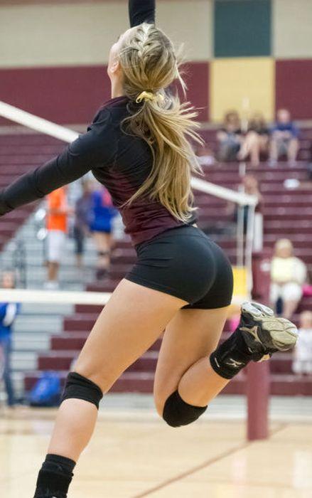 Vamos al Volleyball