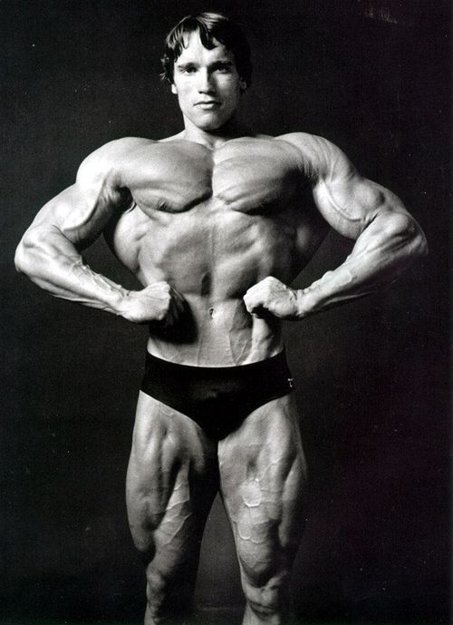 3 Factores importantes en el crecimiento muscular