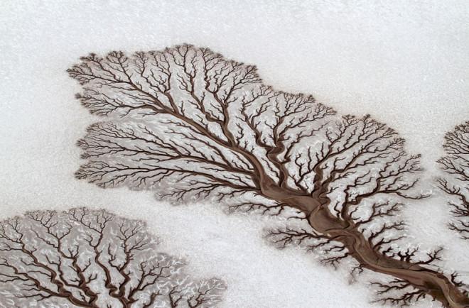 mejores-fotos-de-national-geographic-en-2014-6