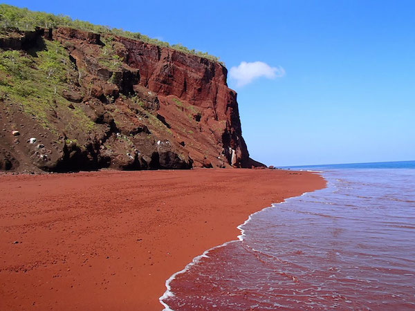 Red-Sand-Beach-Rabida-Galapagos