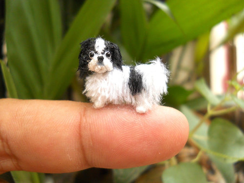 mini dogs 10