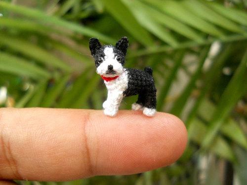 mini dogs 4