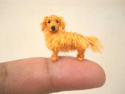 mini dogs 7