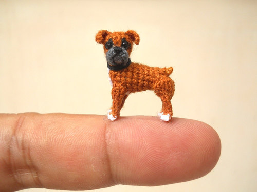 mini dogs 8