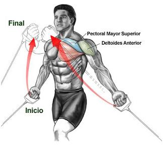 Gym | Entrenamiento de Pecho | El124.com