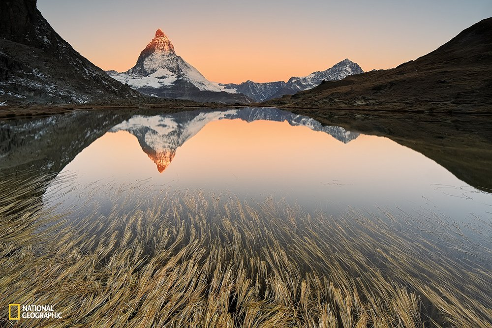 10 Geniales fotos del National Geographic Photo Contest 2015