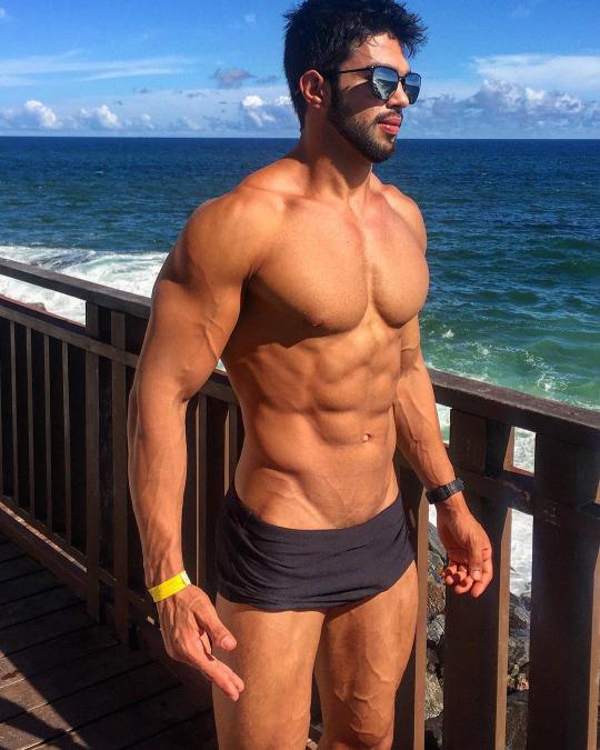 Músculo, músculo puro músculo, inspiración para el gimnasio - Abdomen