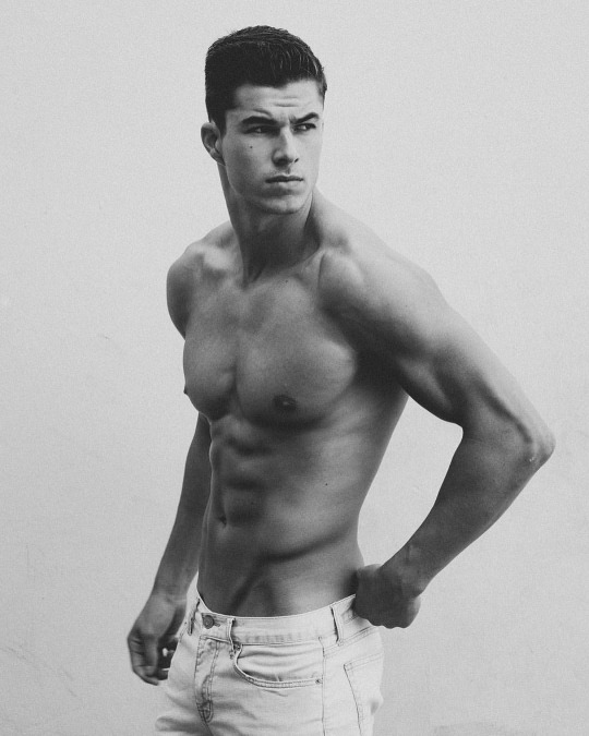 Músculo, músculo puro músculo, inspiración para el gimnasio - Oblicuos y Abs