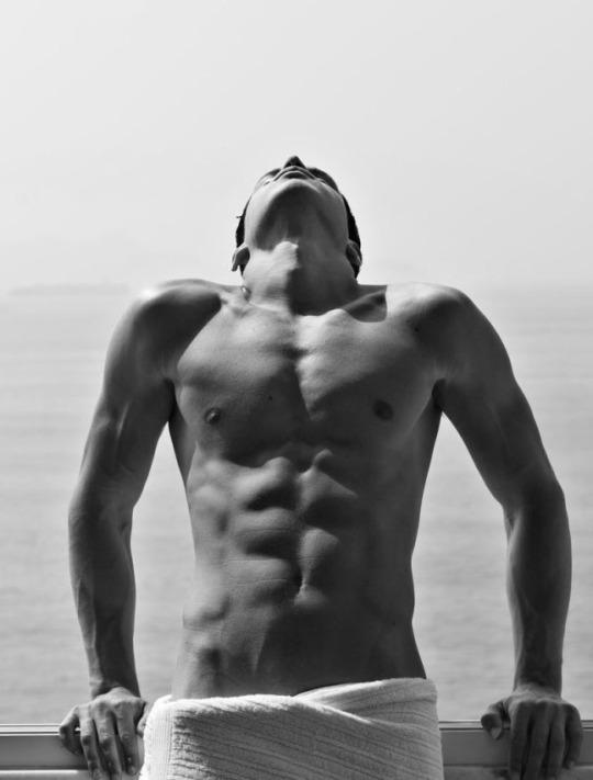 Hombres fitness del gimnasio y la vida
