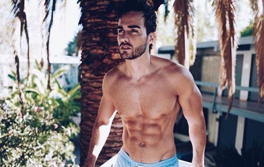 Músculos marcados y definidos la meta de los hombres fitness - Hombre Gym