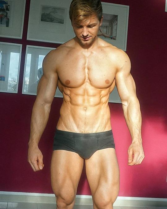 Músculos y cuerpos
