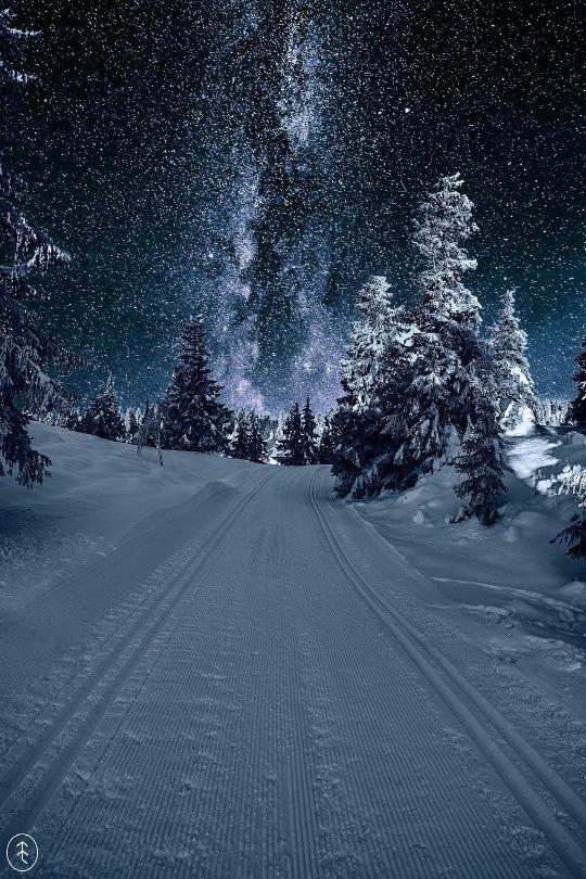 Viajes por el mundo invernal